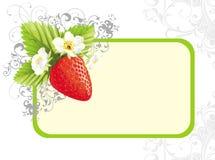 флористическая клубника иллюстрации цветков иллюстрация вектора