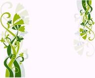 Флористическая конструкция Стоковые Фото