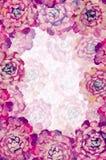 Флористическая предпосылка розового пиона цветет искусство для поздравительной открытки, праздники иллюстрации картины маслом, пр Стоковые Фотографии RF