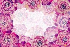 Флористическая предпосылка розового пиона цветет искусство для поздравительной открытки, праздники иллюстрации картины маслом, пр Стоковые Фото