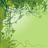 Флористическая предпосылка Стоковое Фото