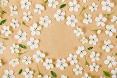Флористическая рамка сделанная из белых цветков весны, бутонов и листьев зеленого цвета на предпосылке коричневой бумаги Плоское  Стоковые Изображения RF