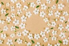 Флористическая рамка сделанная из белых цветков весны, бутонов и листьев зеленого цвета на предпосылке коричневой бумаги Плоское  Стоковые Фото