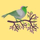 Флористическая рамка с красочной птицей над ветвью дерева с листьями и ягодами иллюстрация штока