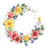 Флористическая рамка с полевыми цветками Нарисованный рукой элемент дизайна акварели иллюстрация вектора