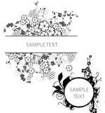 флористическая рамка Стоковое Изображение