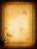 флористическая старая текстура Стоковое Изображение RF