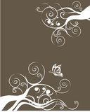 флористическая текстура Стоковое фото RF