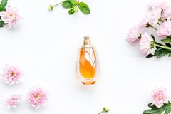 Флористические духи для женщин Бутылка духов около чувствительных розовых цветков на белой картине взгляда сверху предпосылки стоковая фотография