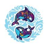 Флористические киты косатки в круге r иллюстрация вектора
