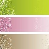 флористические панели Стоковые Изображения RF