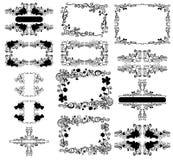 флористические рамки Стоковые Фото