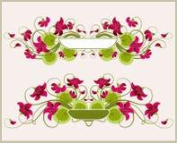 флористические рамки Стоковые Изображения RF