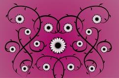 флористические розовые пурпуровые лозы Стоковая Фотография