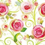флористические розы картины безшовные Иллюстрация штока