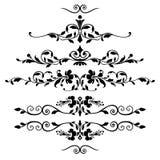 флористические установленные орнаменты Стоковые Фото