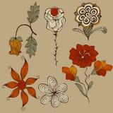 Флористические эксцентричные элементы конструкции иллюстрация вектора