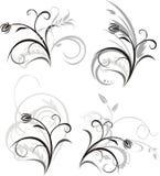 флористические 4 орнамента Стоковые Изображения
