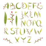 Флористический алфавит сделанный из красных ягод и листьев Summe нарисованное рукой Стоковая Фотография RF