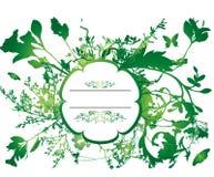 флористический брызг цветка иллюстрация вектора