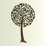 флористический вал Стоковая Фотография RF