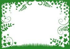 флористический вектор зеленого цвета рамки иллюстрация вектора
