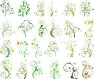 флористический вектор комплекта Стоковые Фото