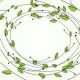 флористический вектор рамки формы Стоковое фото RF