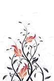 флористический вектор свирли Стоковые Изображения