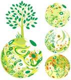 флористический глобус Стоковое фото RF