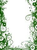 флористический зеленый цвет рамки Стоковое Изображение
