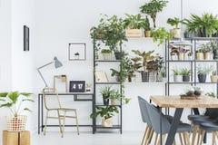 Флористический интерьер домашнего офиса стоковые изображения rf