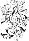 флористический орнамент Стоковые Фото