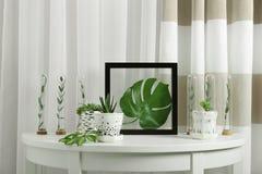 Флористический состав с листьями зеленого цвета на таблице Стоковая Фотография