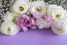 Флористический состав с цветком стоковые фотографии rf