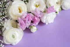 Флористический состав с цветком стоковое фото