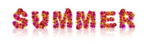 Флористический текст дизайна цветка с красным ladybug стоковые фотографии rf