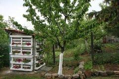 Флористический туалет деревни стоковое изображение rf