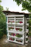 Флористический туалет деревни стоковое фото
