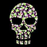 флористический scull Стоковые Фотографии RF