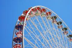 флористическое гигантское колесо Стоковые Фото