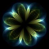 флористическое зарево Стоковое Фото