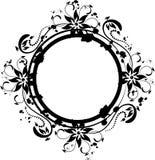 флористическое изображение Стоковые Фото