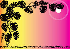 флористическое предпосылки декоративное иллюстрация вектора