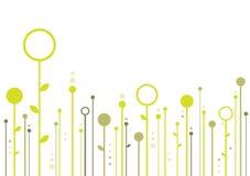 флористическое предпосылки творческое иллюстрация штока