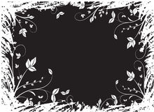 флористическое предпосылки черное Стоковые Фото