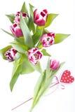 Флористическое расположение с тюльпанами Стоковые Изображения RF