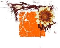флористическое grunge рамки Стоковое Изображение RF