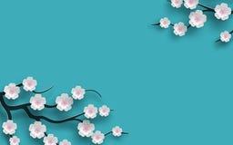 Флористической вишня украшенная предпосылкой зацветая цветет ветвь, яркий голубой фон для дизайна сезона времени весны знамя, пла иллюстрация штока