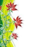 флористическо Стоковые Фото